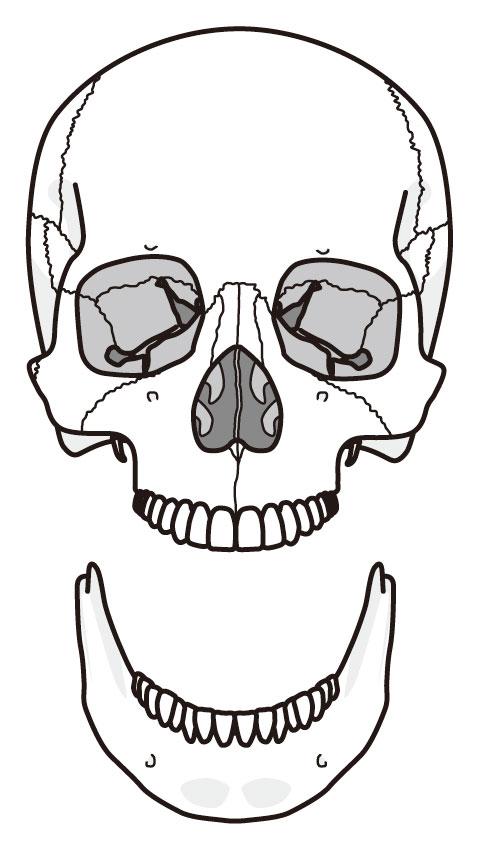 顎が外れるイメージ